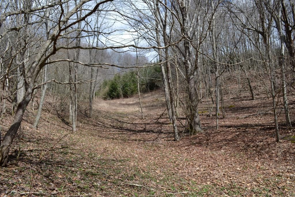 d5e7923d3f 56 acres in VA! Grayson Highlands Farm and Weavers Store.  290
